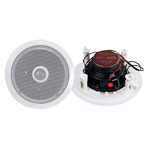 6.5 Inch Ceiling Speakers