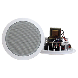8 Inch Ceiling Speakers