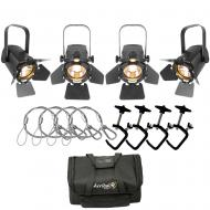 Chauvet EVETF20 LED Lights (4) with Arriba AC420 Case, C-Clamps & Safety Cables
