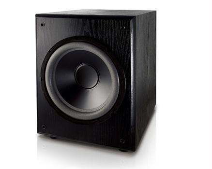 "Dual L10SW 10"" Powered Subwoofer 220 Watts"