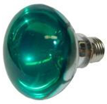 Eliminator Lighting EL-137-G R30 Lamp 120 volt 60 watt Green
