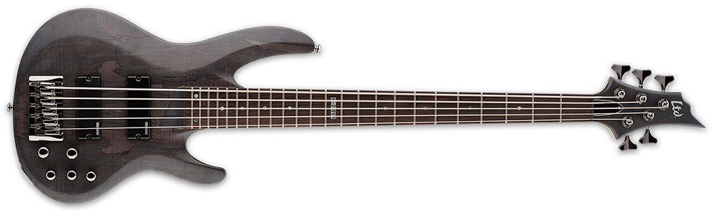 ESP LTD B-205 SM STBLKS 5-String Spalted Maple Top Electric Bass Guitar - See Thru Black Satin Finish (LB205SMSTBLKS)