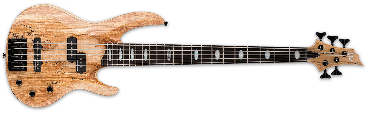 ESP LTD RB Series RB-1005SM 5-String Solid Spalted Maple Top Bass Guitar - Natural Satin Finish (LRB1005SMNS)