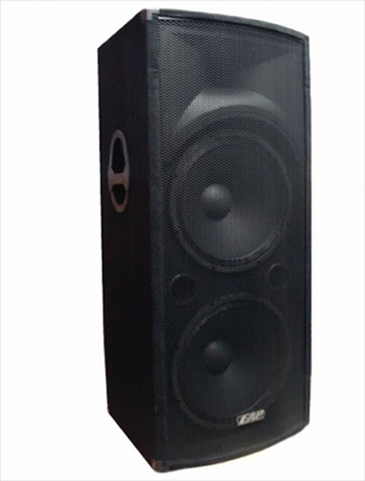 Eliminator Lighting EAP-215D High-Definition Professional Speaker - 1000 Watts Peak Power!